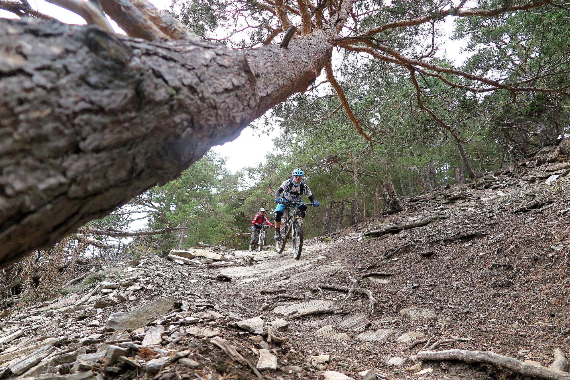 Ride Alpine Trails Mountainbike Freeride & Enduro Camp MTB Freeride Alpencross Westalpen Ride on