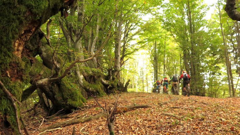 MTB Freeride Camp Slowenien