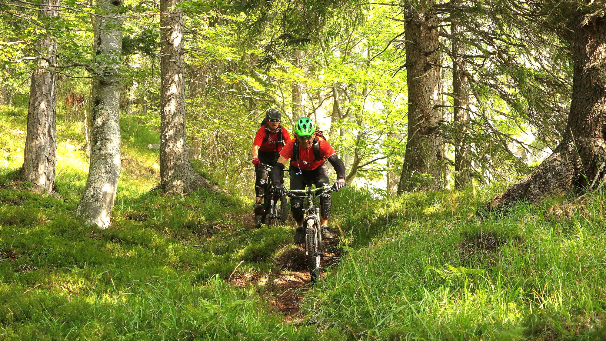 Ride Alpine Trails Mountainbike Freeride & Enduro Camp MTB Freeride Camp Slowenien Ride on