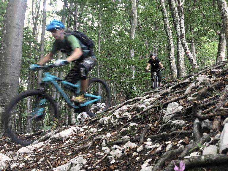 MTB Freeride Alpencross Enduro Transalp Ostalpen