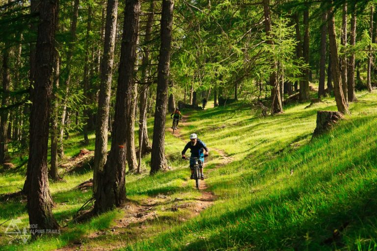 MTB Freeride Hautes Alpes- Trail Paradies
