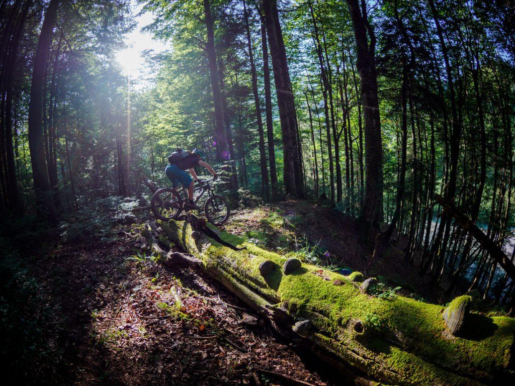 MTB Freeride Fahrtechnik- Trail Technik Intensiv