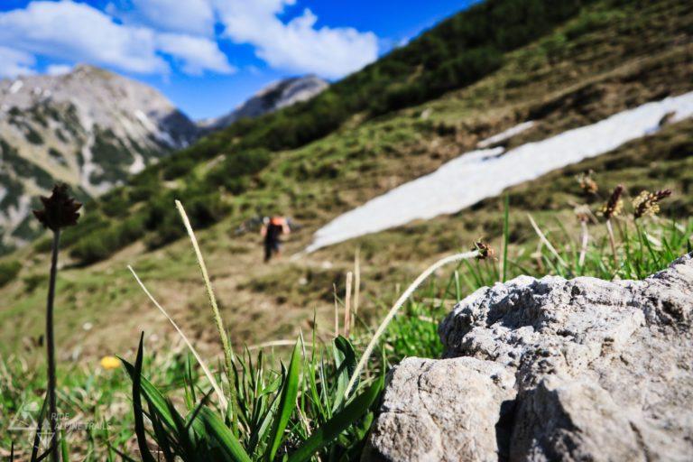 MTB Allgäu Trails