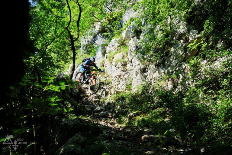 MTB Freeride Slowenien