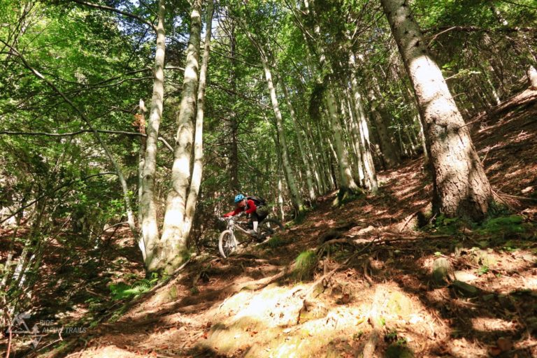MTB Ride Alpine Trails Individuell