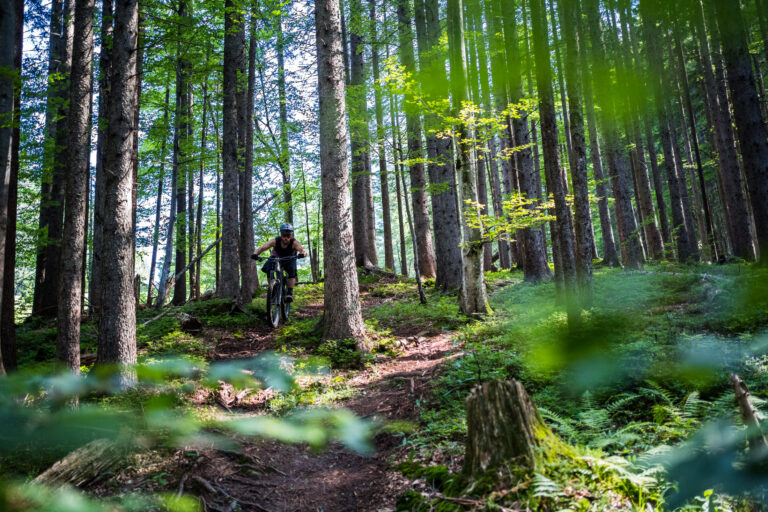 MTB Allgaeu Trails