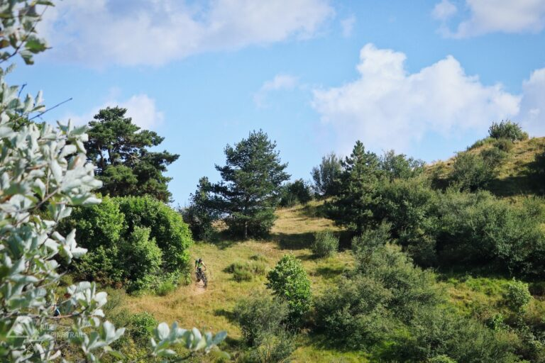MTB Haute Provence